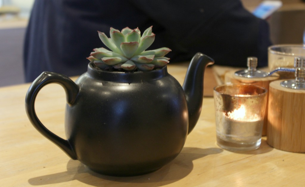 Succulent-Tea-Pot