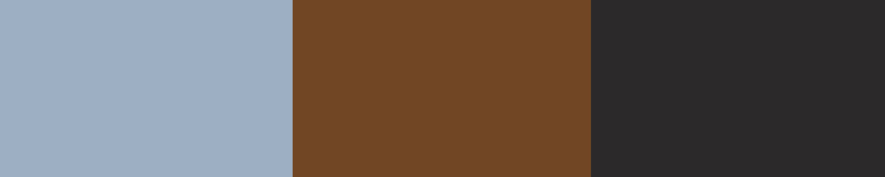 colourbuddies_coolearth_palette